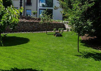 fűnyírás szolgáltatás Budán, gyönyörű karbantartott pázsit, hangya kert, kertfenntartás, kertépítés, kerttervezés fűnyírás