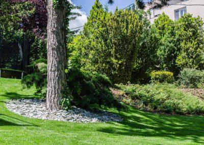 díszcserjék, fenyőfélék, hangya kert, kertfenntartás, kertépítés, kerttervezés fűnyírás, öntözőrendszer építés, öntözőrendszer telepítés, öntözőrendszer tervezés, kertfenntartás Budán heti rendszerességgel, kert gondozás, sövény nyírás, kertész szakember Buda, kertépítő vállalkozás Budán, kerttervező szakember Budán, kertfenntartó Buda