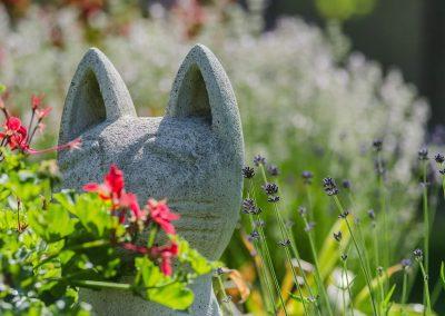 kerti díszek, macska, dekoratív színező virágok a kertben, muskátli, levendula, hangya kert, kertfenntartás, kertépítés, kerttervezés fűnyírás, öntözőrendszer építés, öntözőrendszer telepítés, öntözőrendszer tervezés, kertfenntartás Budán heti rendszerességgel, kert gondozás, sövény nyírás, kertész szakember Buda, kertépítő vállalkozás Budán, kerttervező szakember Budán, kertfenntartó Buda